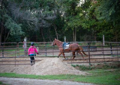 Faith Hope Love Riding Academy