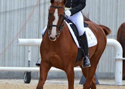 Shirley Svendsen & Isos Training at Faith Hope Love Riding Academy