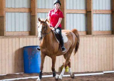 Dressage Faith Hope Love Riding Academy